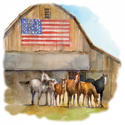 HORSES FLAG BARN