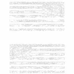 DISTRESSED FLAGS