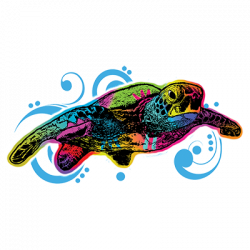 SEA TURTLE SWIRL