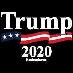 TRUMP 2020 CREST