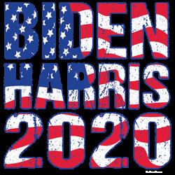 BIDEN HARRIS 2020 FLAG
