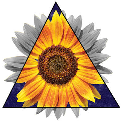 SUNFLOWER TRIANGLE