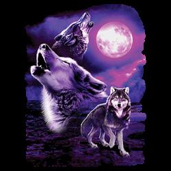 FANTASY WOLF MOON