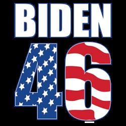 BIDEN 46 FLAG
