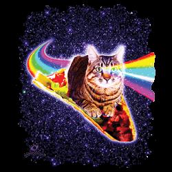 RAINBOW EYES TABBY ON TACO