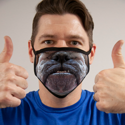 BULLDOG MASK FACE MASKS